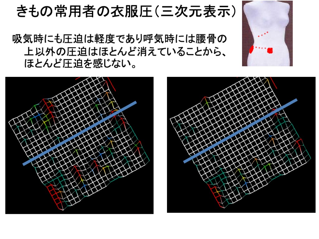 きもの乗用車の衣服圧 三次元表示